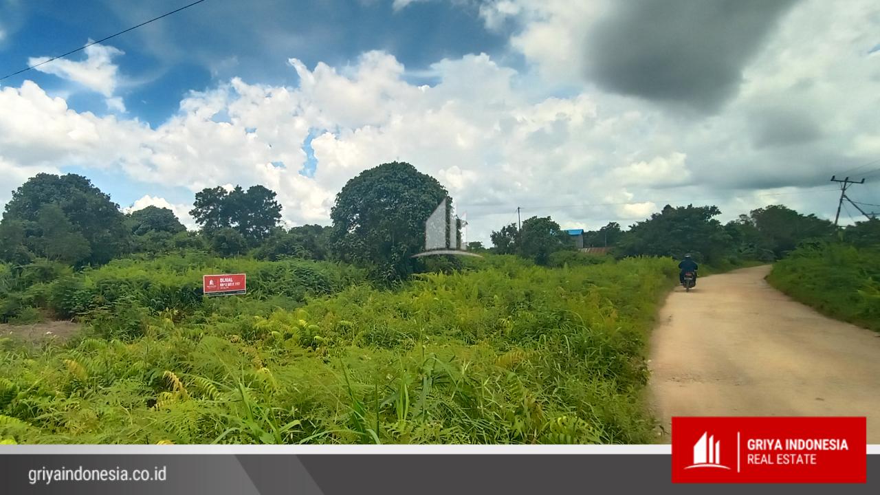 Tanah Luas 1,7 Hektar Jl. Raya Bintang Mas Rasau Jaya, Kubu Raya